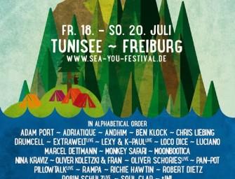 Das Line-Up der Sea You 2014: Solide, aber mit Luft nach oben
