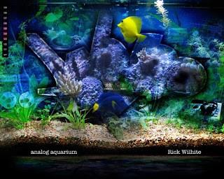 Rick Wilhite – Analog Aquarium