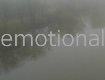 Das neue Projekt heißt Emotional Content